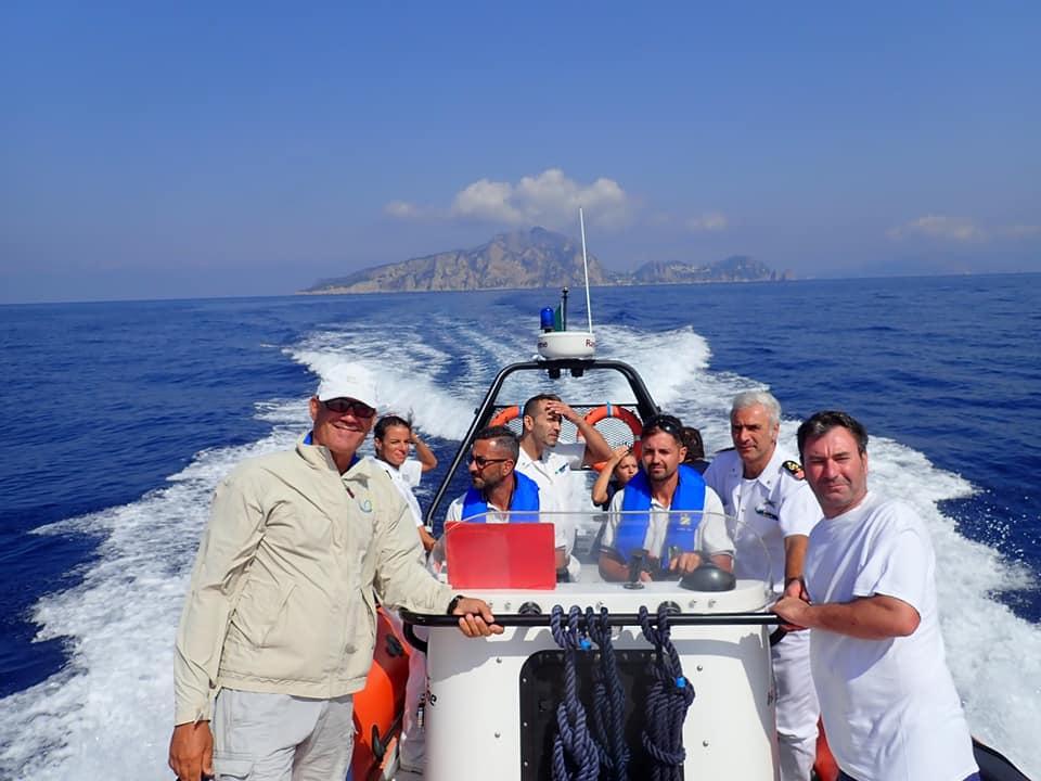 Che spettacolo: rilasciate al largo di Capri le 14 piccole tartarughe dopo l'incredibile schiusa di tre giorni fa sulla spiaggia di Meta di Sorrento. Le foto