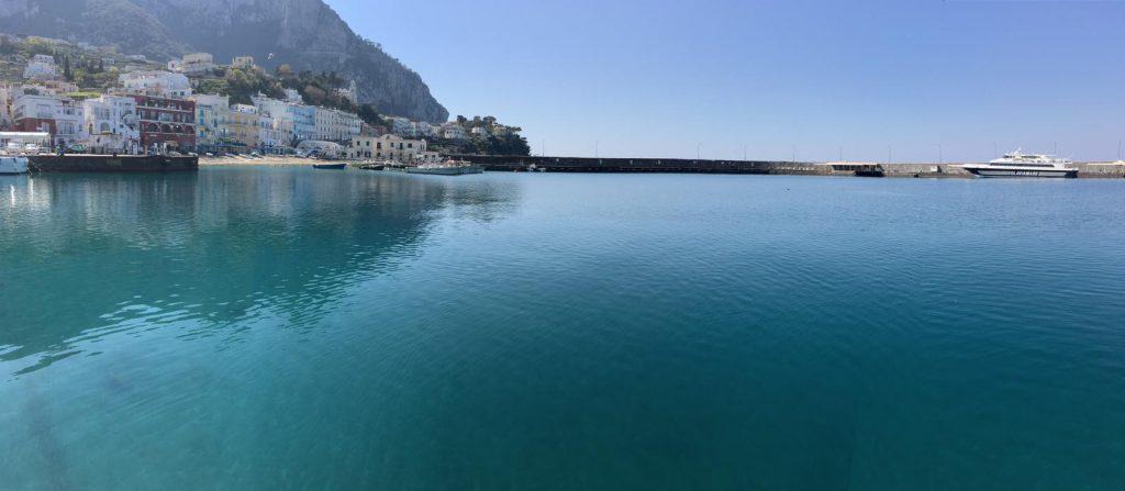 Un bellissimo polpo nuota indisturbato nel porto di Capri, il mare dell'isola è un'esplosione paradisiaca di colori nella primavera col coronavirus