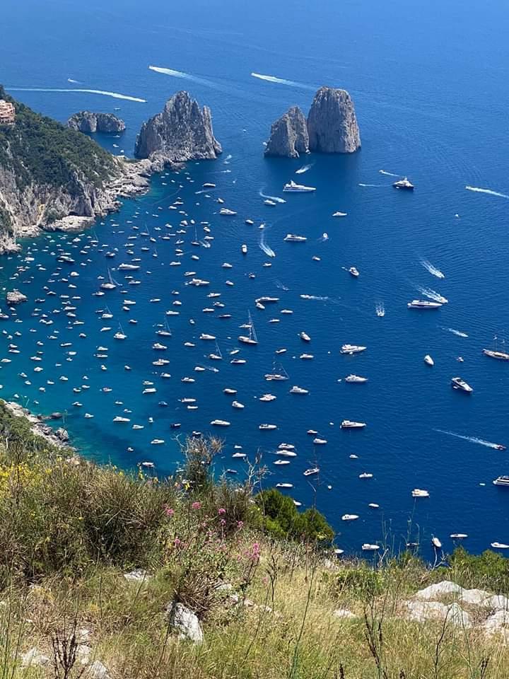 Giacobbe Ruocco nominato da Europa Verde Campania delegato per i rapporti istituzionali per l'istituenda Area marina protetta Isola di Capri