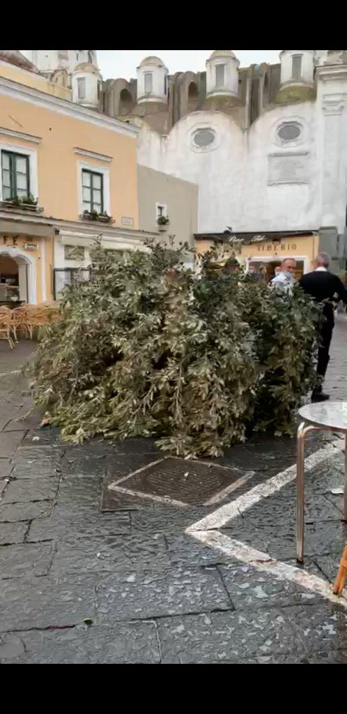Maltempo a Capri: la bufera di vento fa spezzare un enorme ramo che cade in via Longano, muro pericolante in via Pastena. Le foto